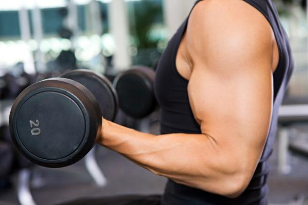 Effective Weight Training