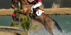 Exercises to Improve Horse Riding