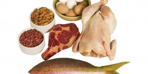 The Best Protein Foods for Building Muscle
