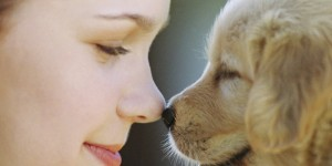 The Perfect Christmas Gifts for Pet Lovers