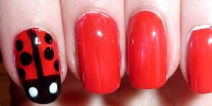 Ladybug Nail Art Design Tutorial & Photos